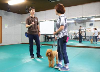 studydogschool_177.jpg