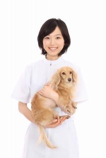 動物看護師.jpg