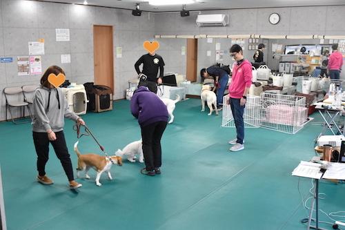 2019. 4.2 8期生育成授業 実技.jpg