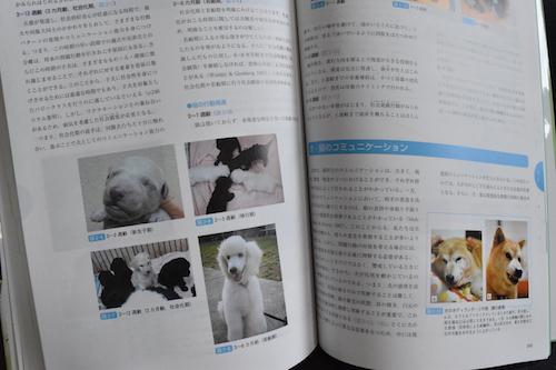 動物看護学 第2版