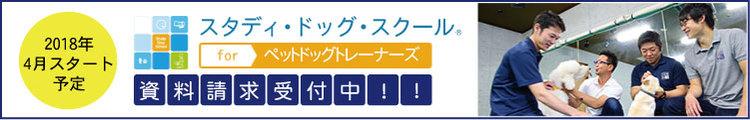 「スタディ・ドッグ・スクール for ペットドッグトレーナーズ」第5期生2017年9月スタート予定!