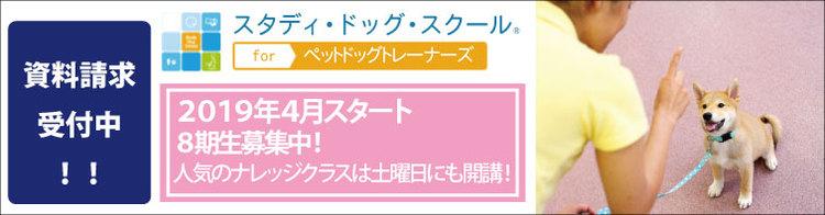 「スタディ・ドッグ・スクール for ペットドッグトレーナーズ」第7期生2018年10月スタート予定!